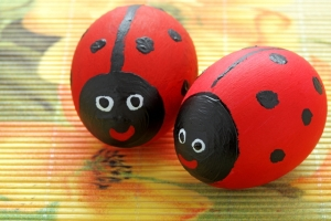 Now these are so adorable and quite concurrent with spring. Of course, some lady bugs are male, by the way.