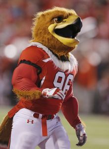 I know he's supposed to replace the previous Native American mascot who was drummed out for various reasons. Still, I can't tell whether Swoop is supposed to be a hawk or a vulture. Either way, he'll sure love the taste of human flesh which has resulted in many disappearances at Ute games.