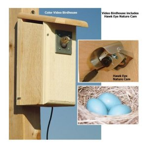 Sure this product has nothing to do with pets, but still, I can just as easily watch birds in a nest in my backyard if I want to. I'm not a nature cinematographer so why would I need a bird house equipped with a surveillance camera?