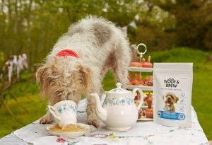 Now I've heard of little girls dressing their dogs for tea time with their toys. But this is ridiculous. Seriously, does Elizabeth II have dog tea for her corgis? No, and neither should you.