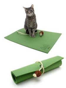 Now I may not know much about cats as I do about dogs. But how exactly does a cat do yoga? Seriously, I really want to know how that works. I mean they have cat yoga mats.
