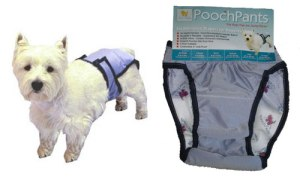Basically it's a dog diaper. Yeah, make it crap the shit out so you'd have to clean dried poop from its rear end. Still, it's machine washable if you're wondering.