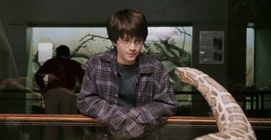 Sure Harry's a wizard all right. But he's able to talk to snakes because he has a part of a soul from the evil guy who killed his parents who split his soul in his quest for eternal life. Of course, Harry ability to talk to snakes has some unfortunate implications in the Chamber of Secrets.