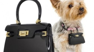 Yes, I'm sure your dog has a deep burning desire to imitate Kim Kardashian. Of course, why your pooch would need a fancy schmancy Park Avenue purse is beyond me.
