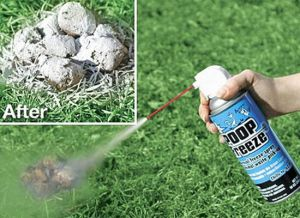 After your dog poops, just spray it with this stuff before picking it up. Of course, what's even more fun than Poop Freeze? Basically having your dog poop in the yard and doing nothing about it.