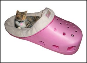 Sure cats need beds. But I don't know if a supersized croc bed really cuts it. Seriously, it just looks stupid like those shoes.