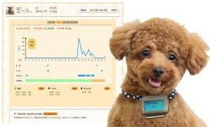 Now watching your weight is one thing. Watching your dog's weight? I don't know. Seriously, why does a thing like this even exist? From Japan.
