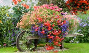 Now this is a beautiful picture. However, many people with wheelbarrows can't do this since they actually use them for other things, like yard work.