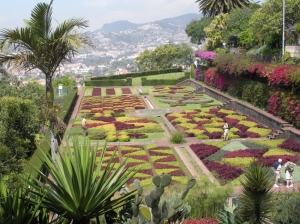 This is from a botanical garden in Madeira which is in the Mediterranean. Still, quite lovely but I'm not sure about the colors.