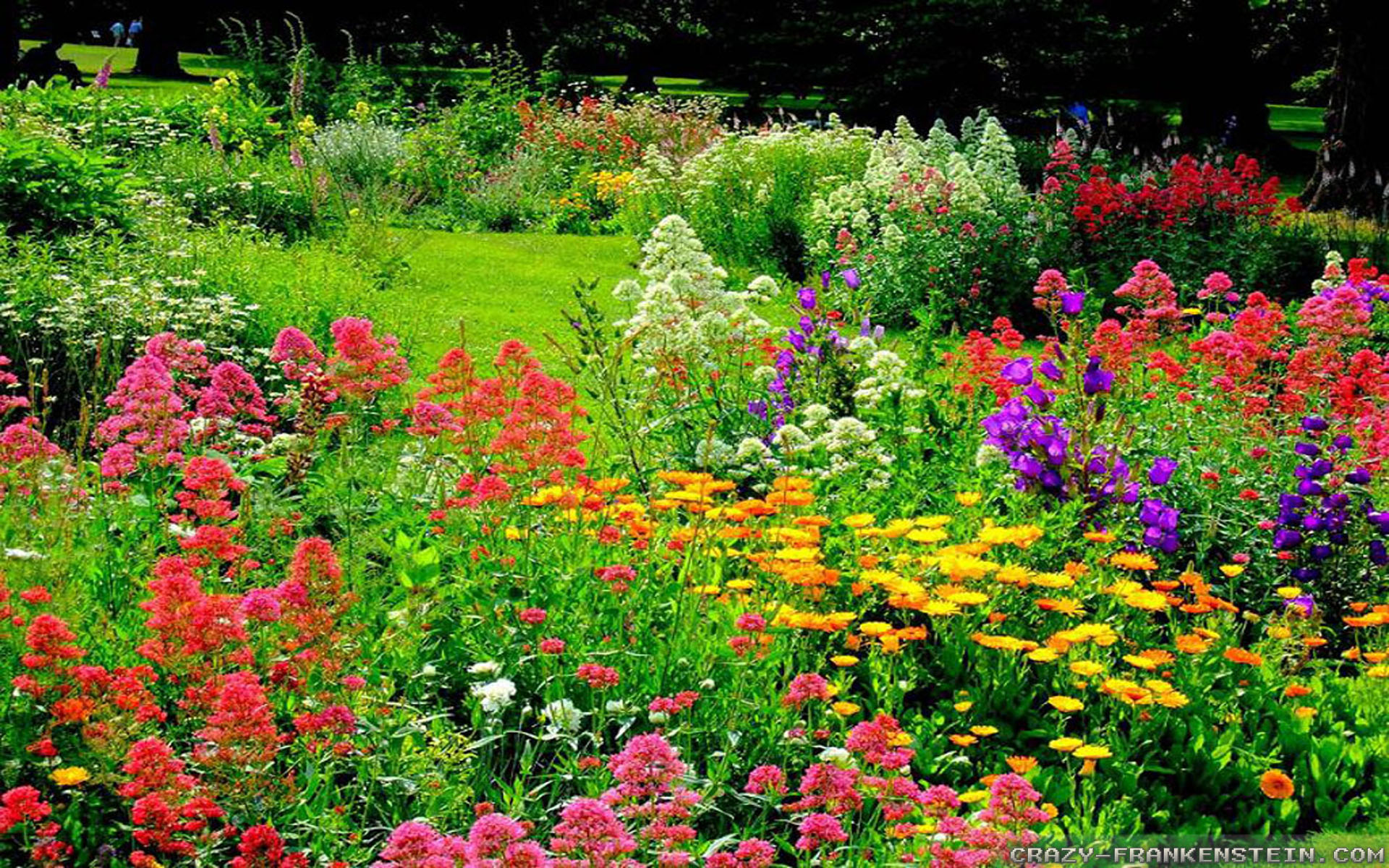 the wonderful world of flower gardens the lone girl in a