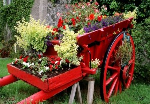 Now I'm sure the cart was painting and isn't pulled by a horse. But the flowers are quite gorgeous in it.