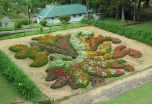 Now this is from a botanical garden from Sri Lanka. And I'm sure that design pertains to something from their culture. Not sure what it's supposed to be though.