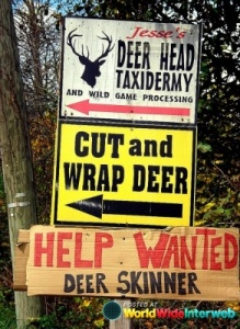 Yeah, seems like deer hunters need not visit this taxidermy place, at least until they find a new skinner. Wonder how they lost the last guy.