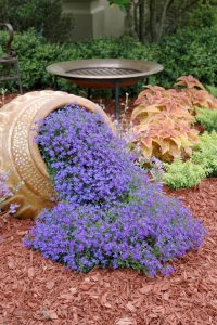 "From the Images: ""Waterfall blue lobelia - No other blue flower can match the intensity of Waterfall Blue lobelia, a perfect floral imitation of water flowing from the pot. Riverdene Gold Mexican Heather gives a lime green color around the container, and Rustic Orange coleus in behind looks good with the heather and the intense blue of the lobelia."" Man, and I thought I said too much sometimes."