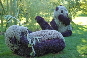 Now I'm sure this is the only pair of adult pandas nobody has tried to mate. Mostly because they're made from foliage. Still cute, though.