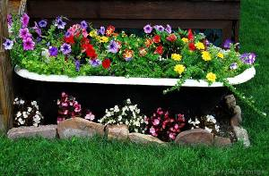 Well, at least a tub somehow makes a great place for planting flowers. Still, love the selection in there.