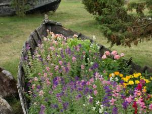 Now I'm sure this rickety wooden boat isn't good for the water. But that doesn't mean you can throw it away if you can still plant flowers in it.