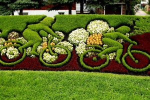 Then again, I'm sure bikes wouldn't be allowed either. Still, I like the daisies on this though.