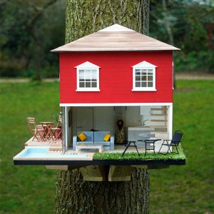 Now this birdhouse has a  nice stairwell as well as some of the latest styles of avian furniture, blinds, and a a swimming pool. Yes, this is the best birdhouse life has to offer.