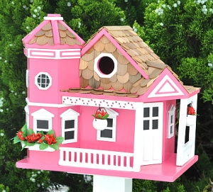 Now this is basically an avian equivalent to a Barbie dream house. Well, maybe not. But I think it's pretty nonetheless even in pink.