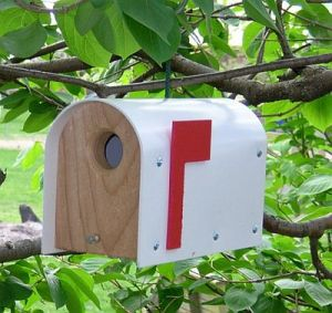 Yes, this birdhouse looks like a mailbox. And it seems to be made from wood and plastic. Still, I'm sure it's more of a place for birdseed than bills.