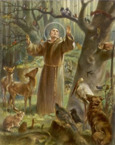 Saint Francis of Assisi is the Roman Catholic patron saint of environmentalism and ecology who preached that all men have a duty to protect and enjoy nature as stewards of God's creation and as creatures ourselves. There are plenty of legends and tales about him that center on his great love for animals and the environment. And prominent conservative Catholics complain that Pope Francis's eco encyclical is a break from Church tradition. Sorry, but it ain't.
