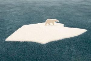 Unlike the real Arctic, at least the carpet ice will never melt as far as this polar bear is concerned. Then again, I wonder if Al Gore has a carpet like this.