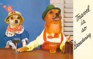 Yes, these are two dogs in the bar and drinking booze. Yes, I know it's supposed to be romantic and adorable. However, I'm not sure if the lady dog is up for what the guy dog is hinting at.