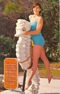 Seems like this woman is choking the poor seahorse. And she's enjoying it! Seriously, let's hope it's just some kinky erotic asphyxiation and not anything sinister. Always look on the bright side of things.