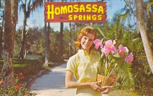 Guess one of the items on Governor Rick Scott's agenda is to change the place's name to Heterasassa Springs. Still doesn't incite the same kind of giggles. Even funny how it shows a woman with orchids. As if there's nothing gay going on there, really.