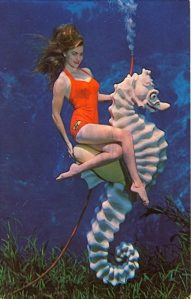 "Well, at least ""Bubbles"" the seahorse is all right. But still, he seems to have dealt with a lot of shit. Nevertheless, these women underwater stuff is quite funny."