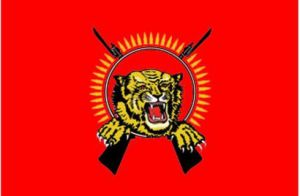 This is a flag a of a proposed Tamil state located in what's currently north and east Sri Lanka. Of course, while the image is badass, it also seems more like an emblem for some armed insurgent organization. Yeah, I think the crossed guns have to go.