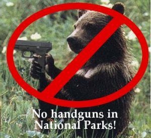 Unless you intend to hunt at the wilderness recreation area, then leave your guns at home. Of course, you won't see a bear with a handgun. However, unless you kill it at the first shot, shooting at a wild animal will just make it madder and willing to attack. It's a reason why firearms are banned in many parks and for good reason. Use bear pepper spray or mace instead.