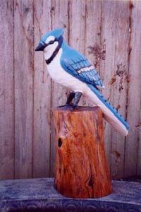 Now I like blue jays and think they're rather pretty birds. But there are some people who think these birds are annoying. They don't understand.