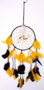Remember a dream catcher is meant to protect people against experiencing nightmares. Or as Steeler fans see it, dreams involving a Super Bowl with the New England Patriots squaring off against the Dallas Cowboys. That or the Dallas Cowboys winning the Super Bowl.