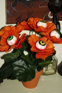 But having eyeballs in the flowers, well, that's just damn creepy. I mean an eyeball is creepy enough when it's not in an eye socket. Seriously, it's gross.