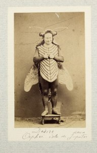Now this is a costume from 1865. Or so I think. Still, it's a bit too realistic for my taste. Well, except that he's not wearing a mask.