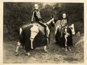 And since they're going as skeletons, the horses should follow suit as well. Still, I think it would be easier for the horses if one of them just went as the Headless Horseman.