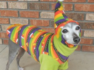 I'm sure the dog doesn't need to wear this ridiculous sweater. I mean it already has something to keep it warm and dry. It's called fur.