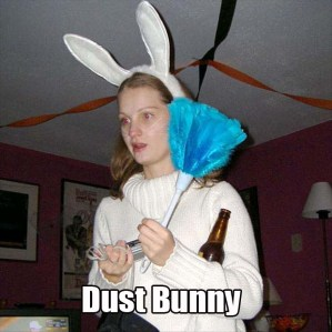 If I saw a rabbit wanting to dust my house, I'd sure let them in. Because I really hate dusting. Really hate it.
