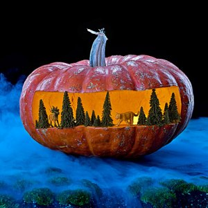 Now I wonder how someone pulled this off. Then again, the pumpkin is probably bigger than it appears in this photo.