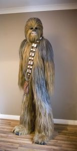 Now this really looks like Chewie. Almost as if this costume was made for the movies.
