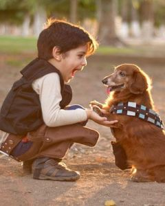 Now that costume set up is adorable. I mean who can't love this picture with this little boy as Han and his dog as Chewie.