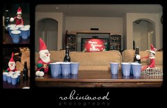 elf-shelf-robinwood_0135