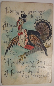 Yeah, but dressing in most turkeys' case usually doesn't apply to formal attire. Also, why the hell is he wearing pants?