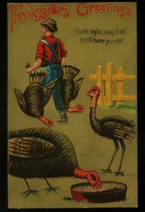 Now come on, a Thanksgiving card with turkeys watching two of their friends get it? Seriously, that's just fucked up.