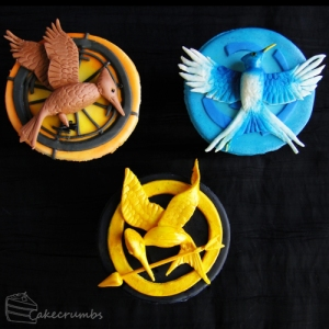 Now these are from the images you see on all 3 books. Of course is a Mockingjay which Katniss is associated with.