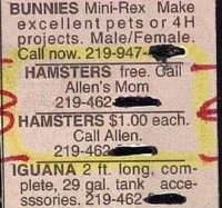 free-hamsters-ads-really-funny