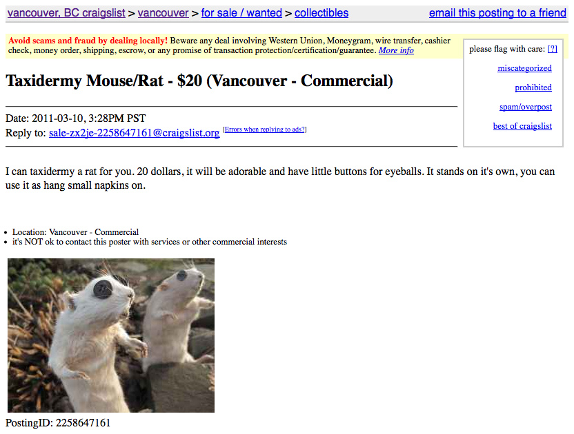 hilarious_craigslist_ad_taxidermy_mouse__rat