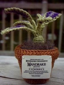Not sure if the mandrake is as ugly as you see in the movies. But I think this is clever.